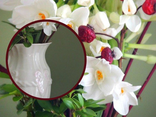 valentine paperwhite vase collage