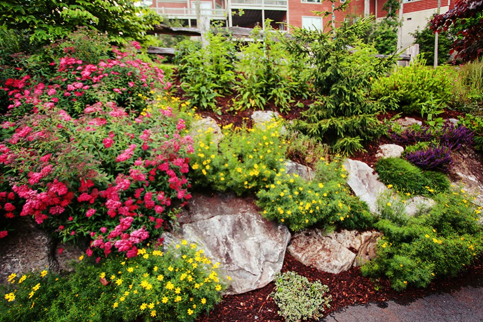 Burnsville Landscape Design by Gardens for Living on Mountain Backyard Ideas  id=12506