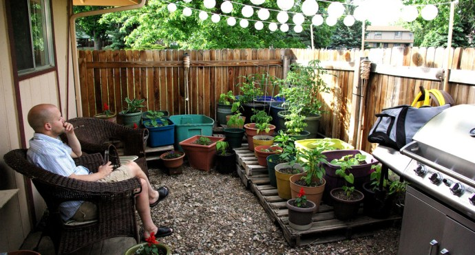 Small Garden In A Small Area Of Your Home