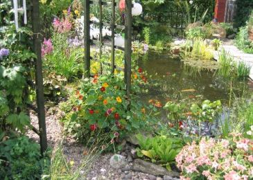 Bounce Steps for Water Garden Design