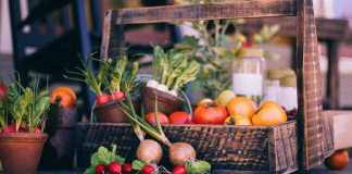 All About Vegetables and Container Garden Home