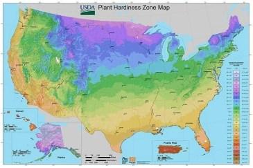 Planting Zones and Seasonal Gardening Guide