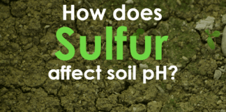 How Does Garden Sulfur affect soil PH?