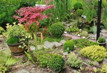 Complete Guide to landscaping Backyard Home
