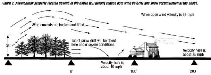 windbeak properly located