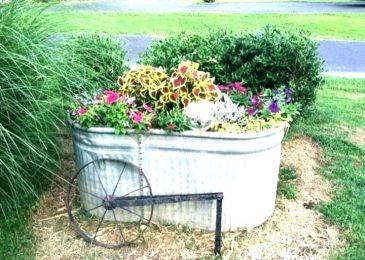 A Beginner's Guide to Creating Garden Troughs