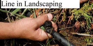 Drip Irrigation the bottom line in Landscaping