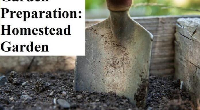 Garden Preparation: A Homestead Garden