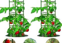 Vegetable and Tomato Cage