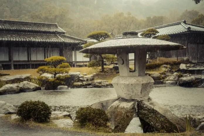 Zen Garden Basics: Learn, Grow, Build Your Own | GARDENS NURSERY