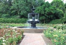 Choosing the Right Garden Fountains in Your Home