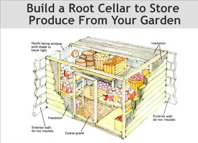 How to Build Root Cellar in your Home Garden