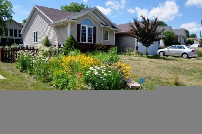 Solve Droughts with Rain Gardens