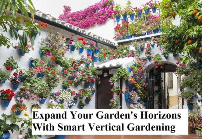 Expand Your Garden's Horizons With Smart Vertical Gardening
