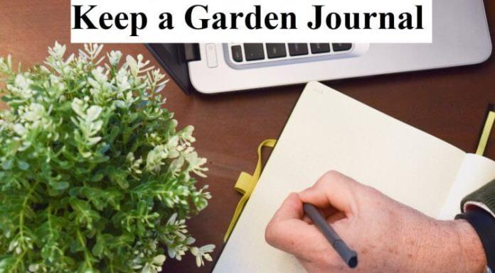 Keep a Garden Journal