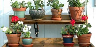 Inexpensive Potting Bench Ideas
