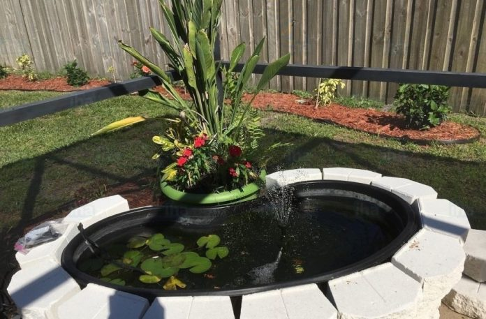 How to Create a Pond In Your Garden