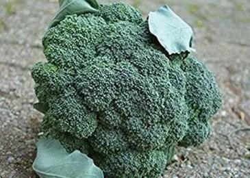 Arcadia Broccoli