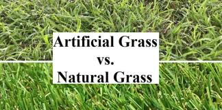 Artificial Grass vs. Natural Grass - What Is The Best For You