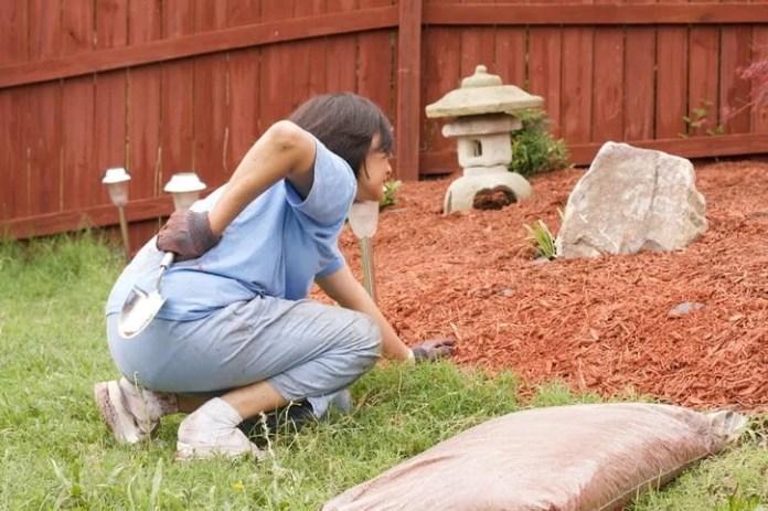 Gardening and Avoiding Back Problems