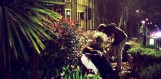 Night-Time Gardening - Night Garden