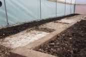 A compost and paving slab heaven