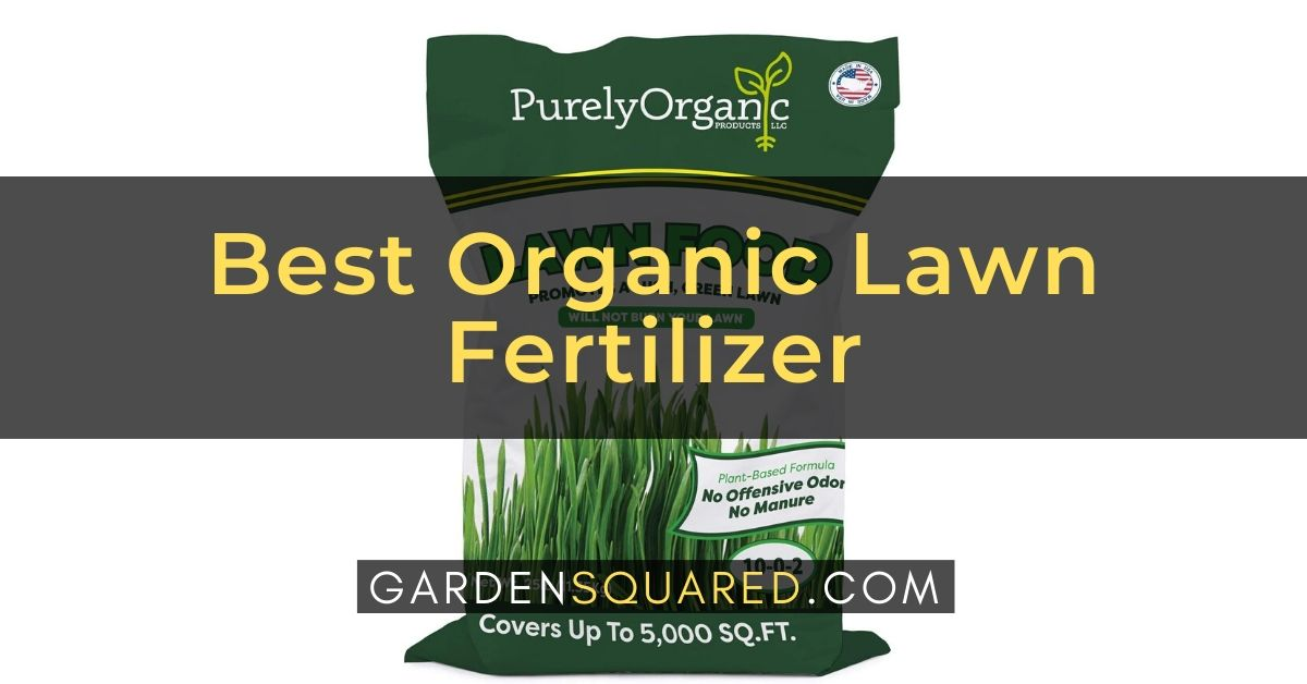 Organic Lawn Fertilizer Reviews