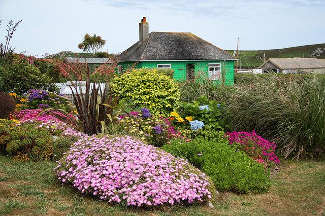 Cottage style backyard flower garden