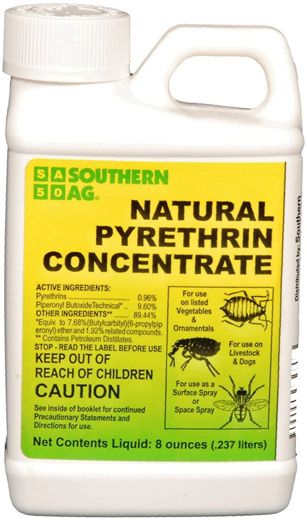 natural pyrethrin concentrate from chrysanthemums