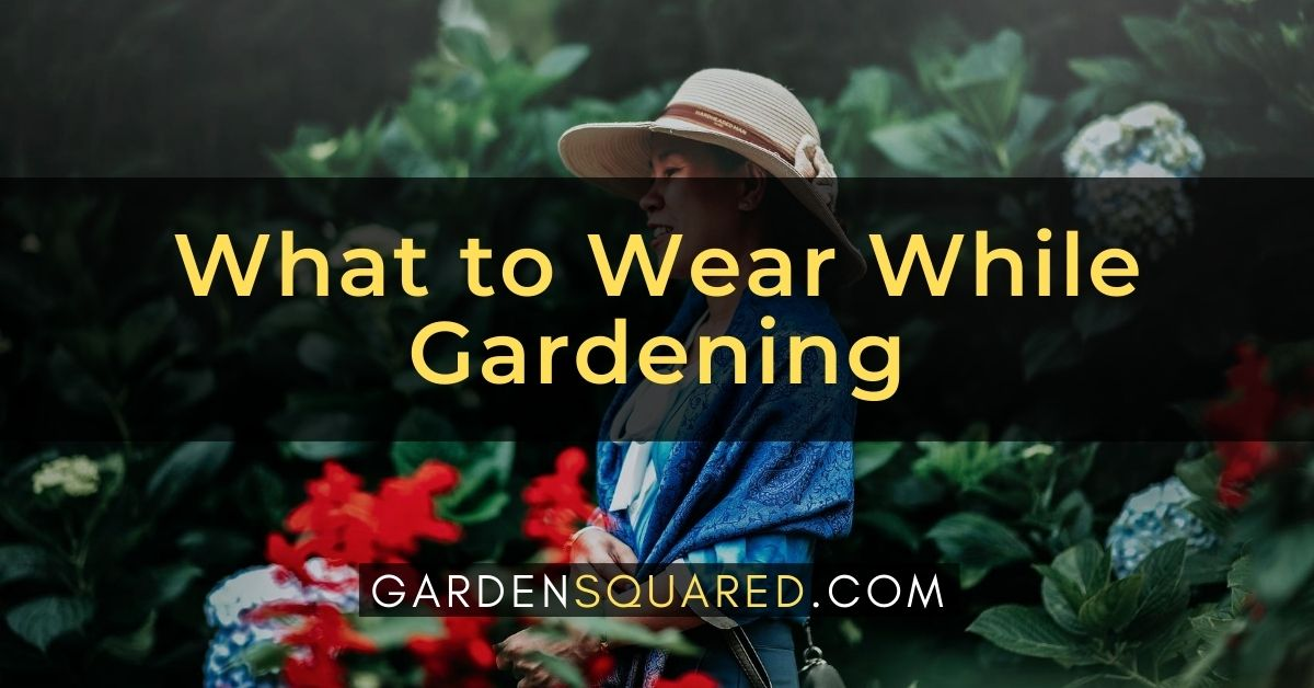 What To Wear While Gardening Clothing Tips For Comfort Safety
