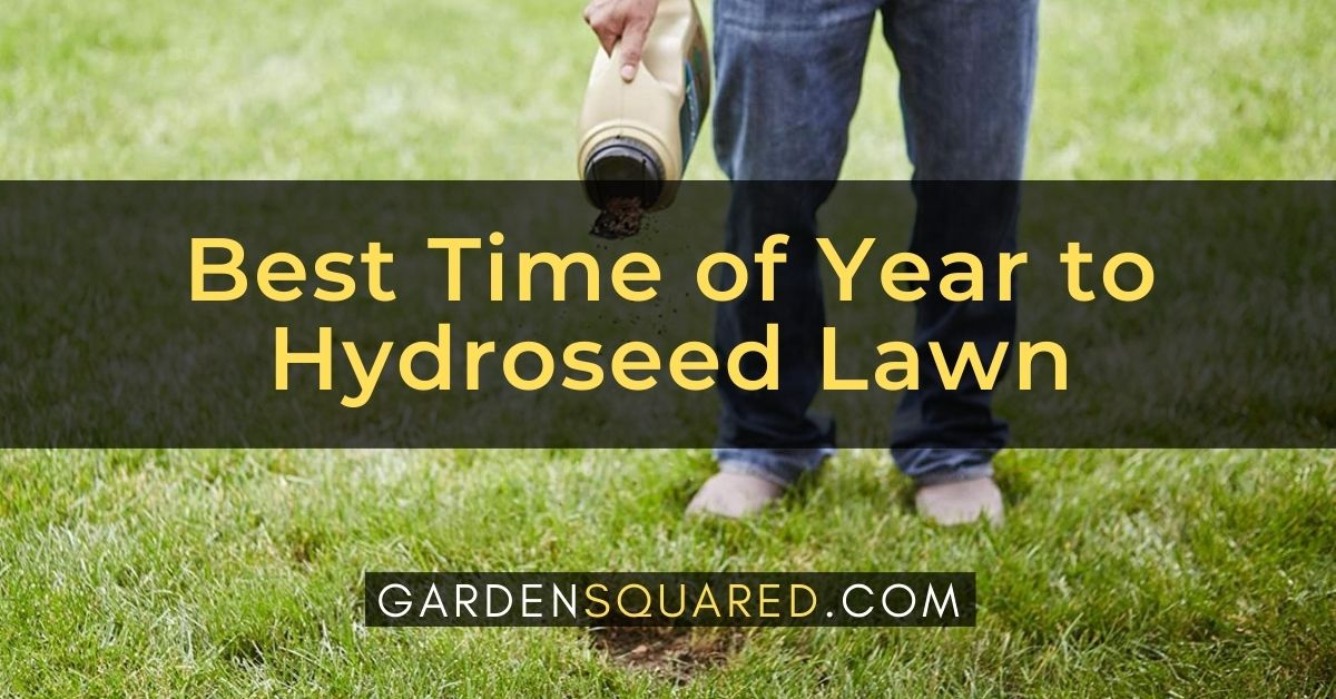 The Best Time Of Year To Hydroseed Lawn