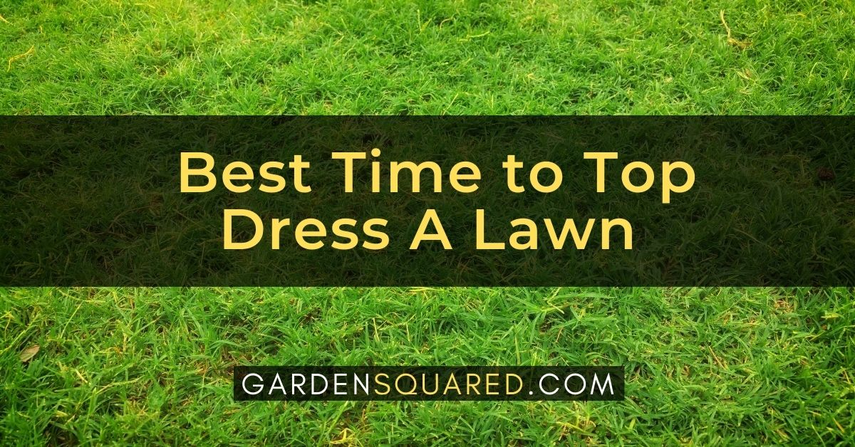 When Is The Best Time To Top Dress A Lawn