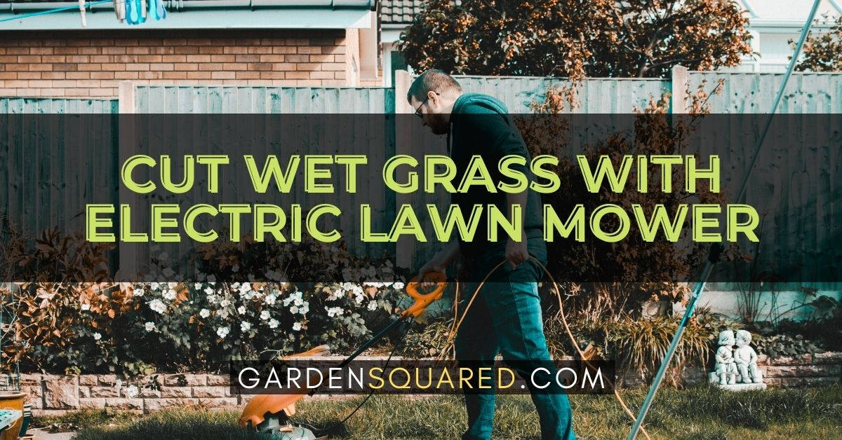Can You Cut Wet Grass With Electric Lawn Mower