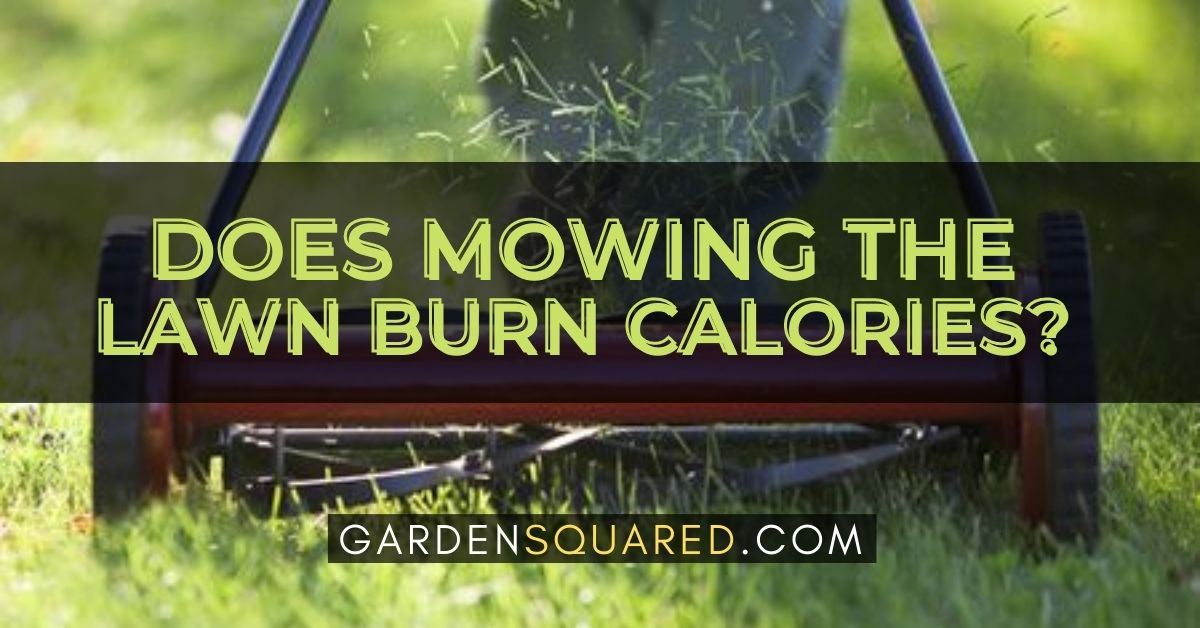 Does Mowing The Lawn Burn Calories