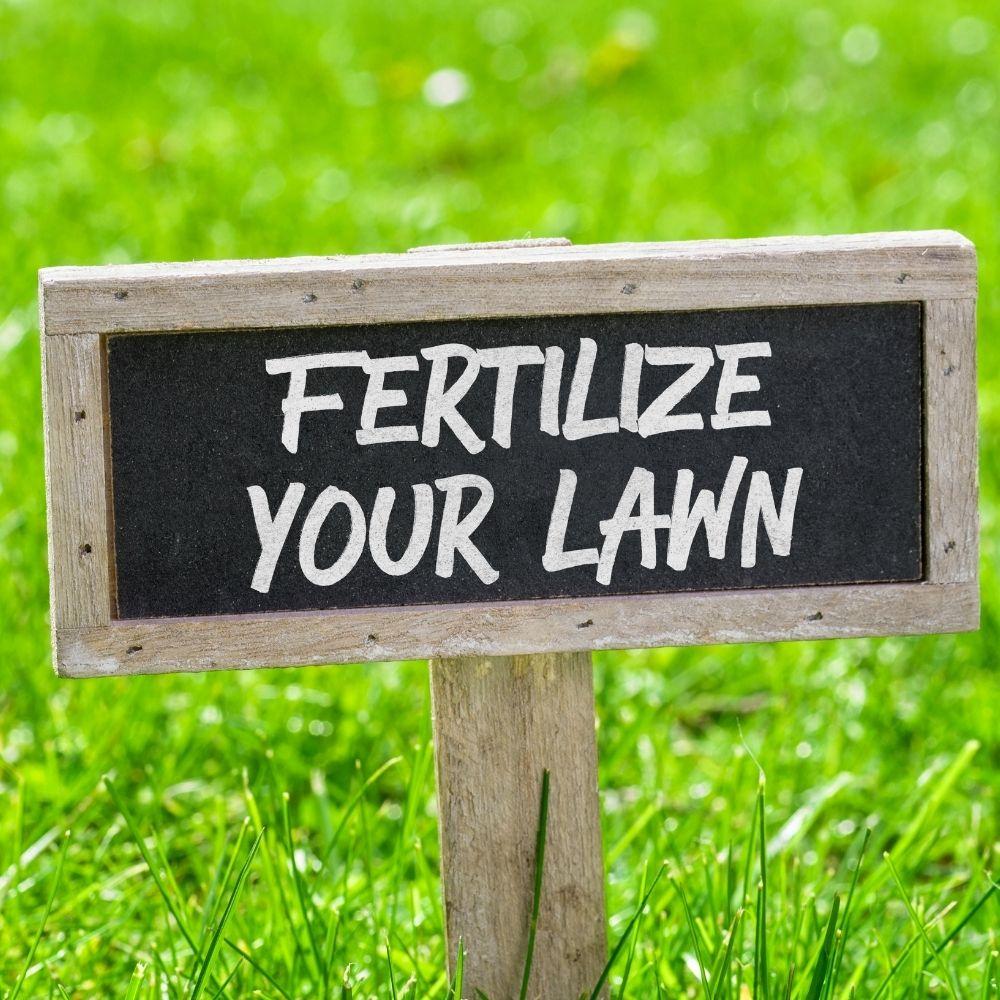 What is Fertilizer Burn in Lawns?