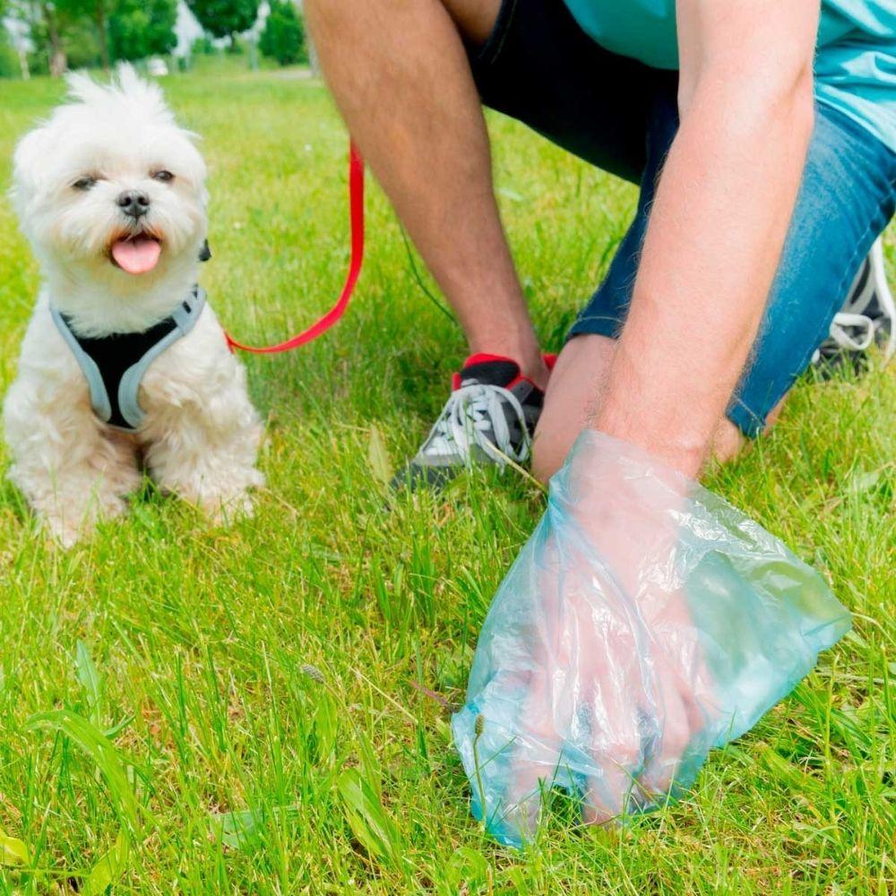 Get Rid Of Pet Waste