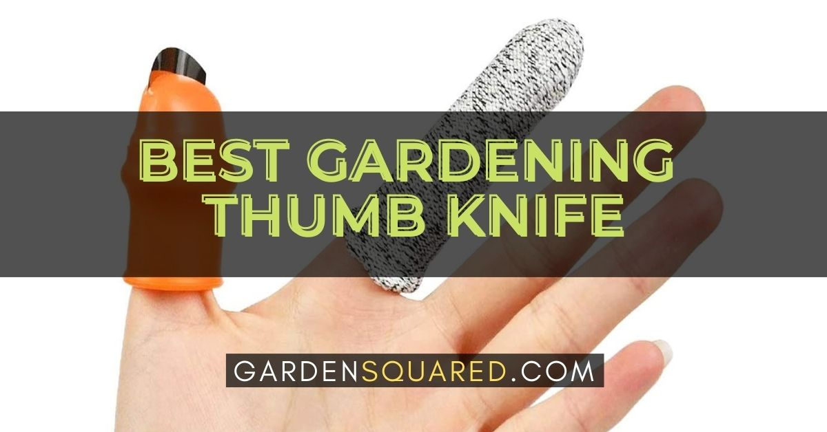 The Best Gardening Thumb Knife