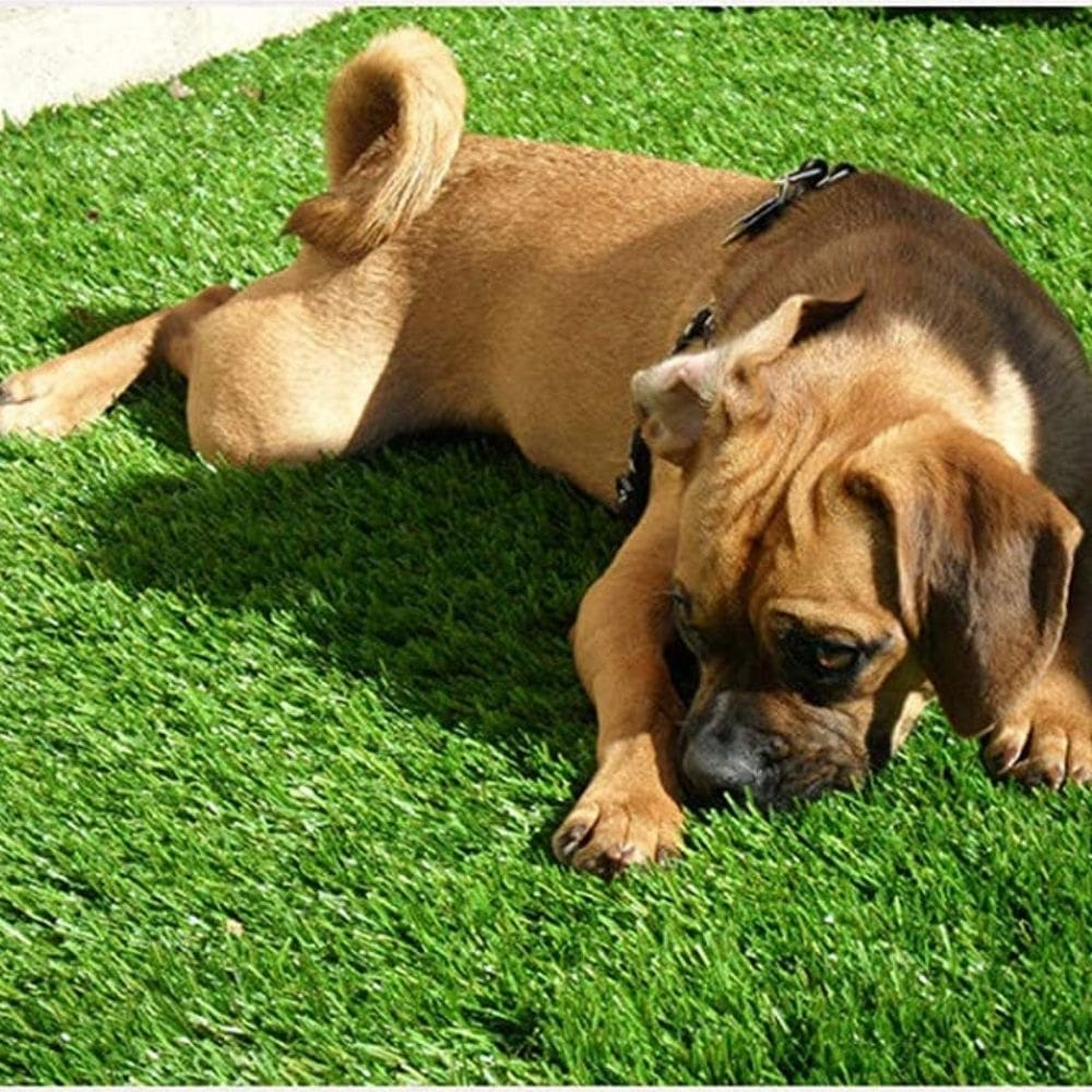 Realistic Thick Artificial Grass Turf 5FTX10FT(50 Square FT)
