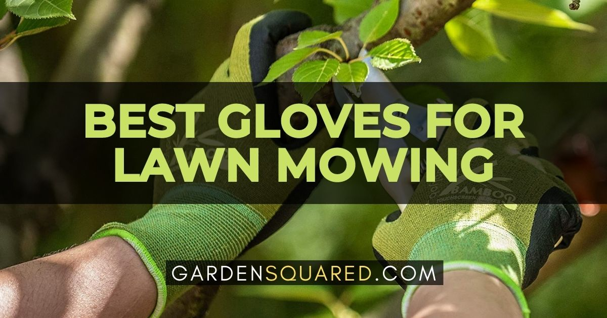 Best Gloves For Lawn Mowing