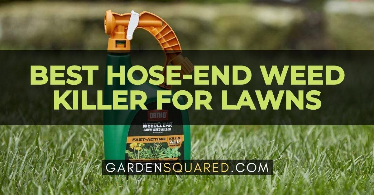 Best Hose End Weed Killer For Lawns