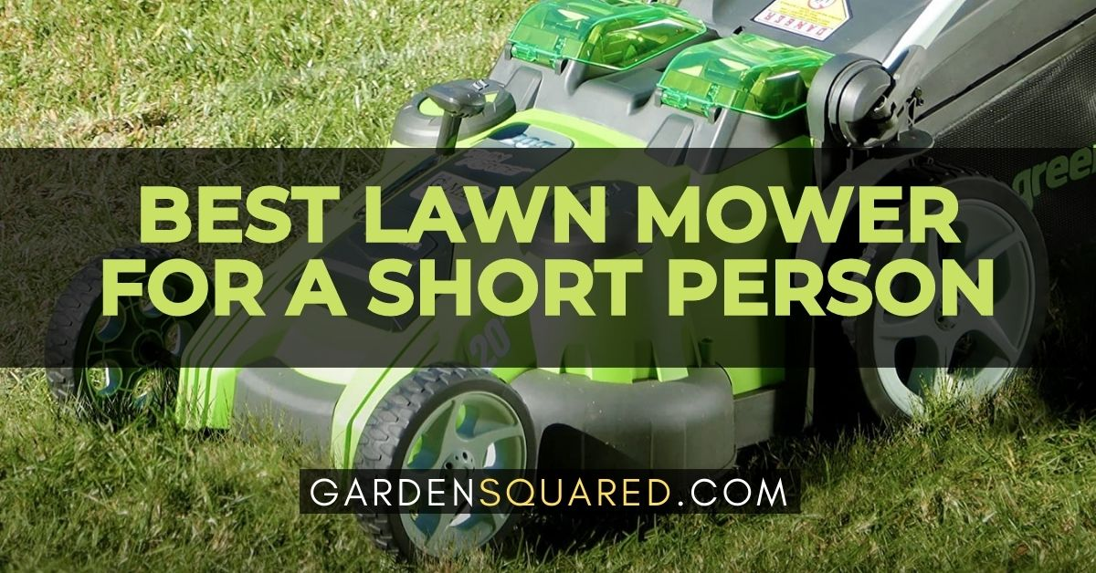 Best Lawn Mower For A Short Person