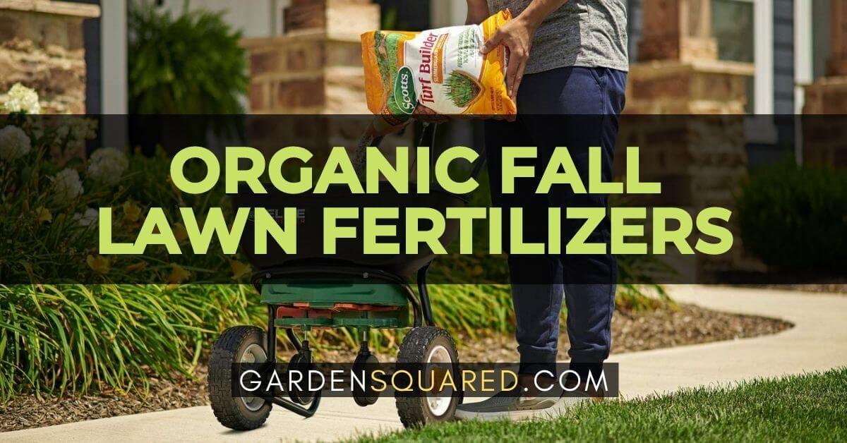 Best Organic Fall Lawn Fertilizers