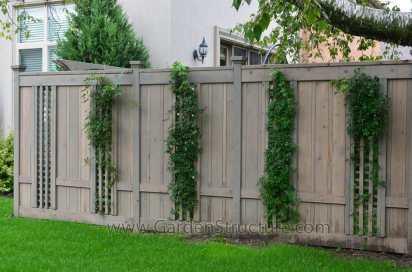 Fences_Toronto_ON