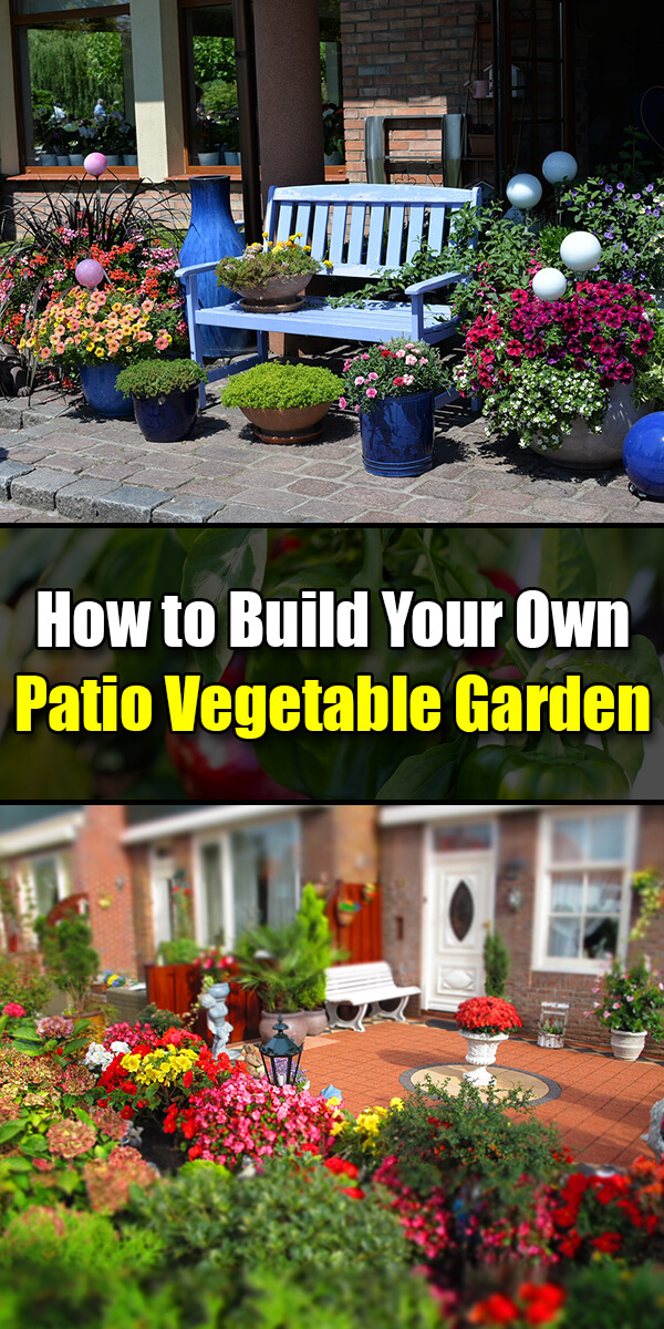 build your own patio vegetable garden