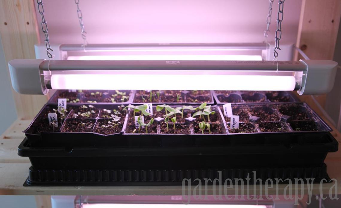 Full Spectrum Light Bulbs