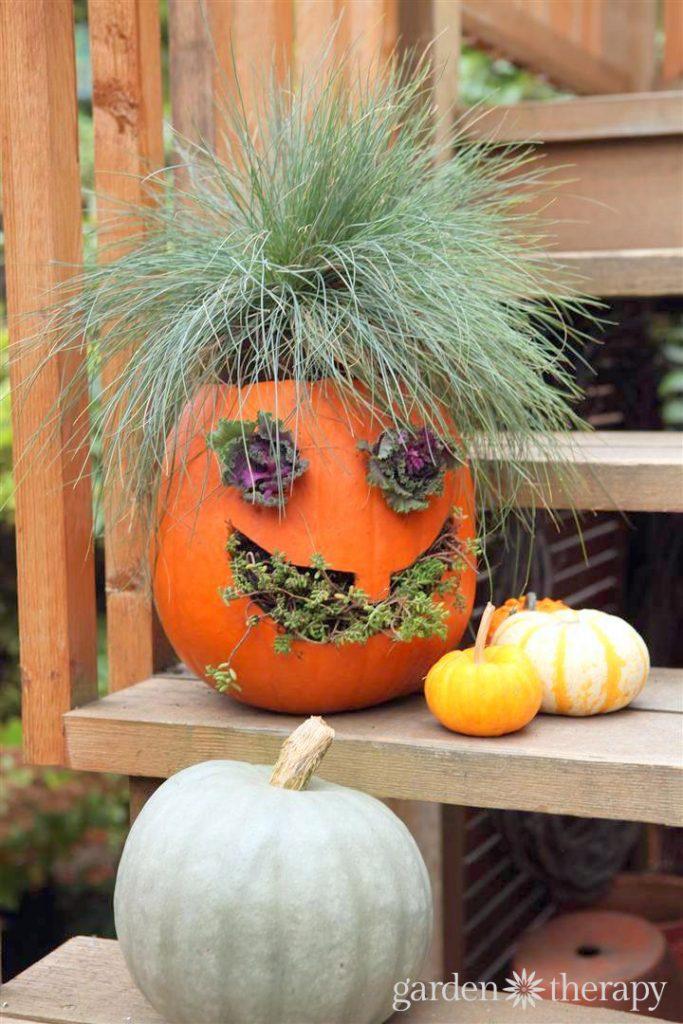 How to Make Jack-o-Planterns creative pumpkin planters
