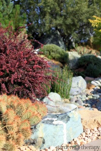 landscaping garden design ideas Landscaping for Drought: Inspiring Gardens That Save Water