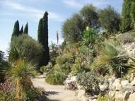 La Mortola - Hanbury gardens