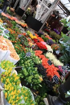 HOL_Amsterdam_Flowers_IMG (904)_APT_GU