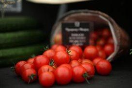 Tomatoes at Malvern
